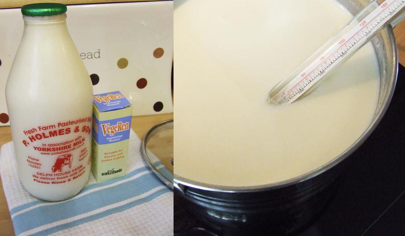 Junket raw milk rennet and cooking milk