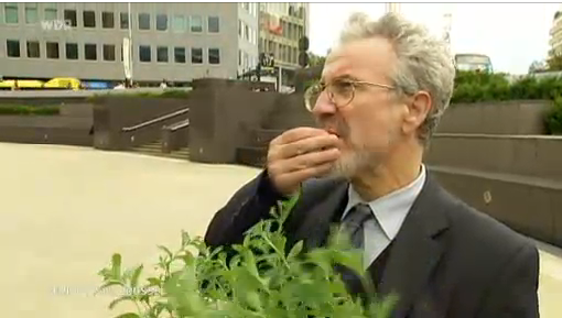 Professor Jan Geuns with stevia plant in Brussels