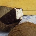 Fresh Coconut Paleo Bounty bars sweetened with Stevia