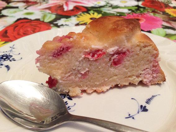 Raspberry_Lemon_cake-elimination_diet-slice