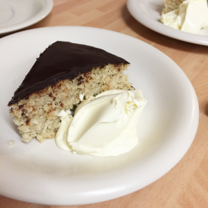 Foolproof-coconut-cake-with-Stevia-with-chocolate-covering